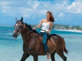 sugar-beach-hotel-mauritius-beach-horse-riding