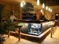 pointe-aux-biches-mauritius-bar